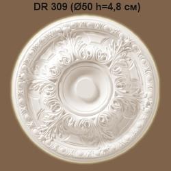 dr309