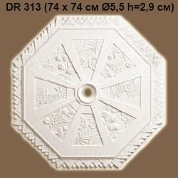 dr313