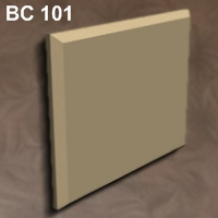 bs101